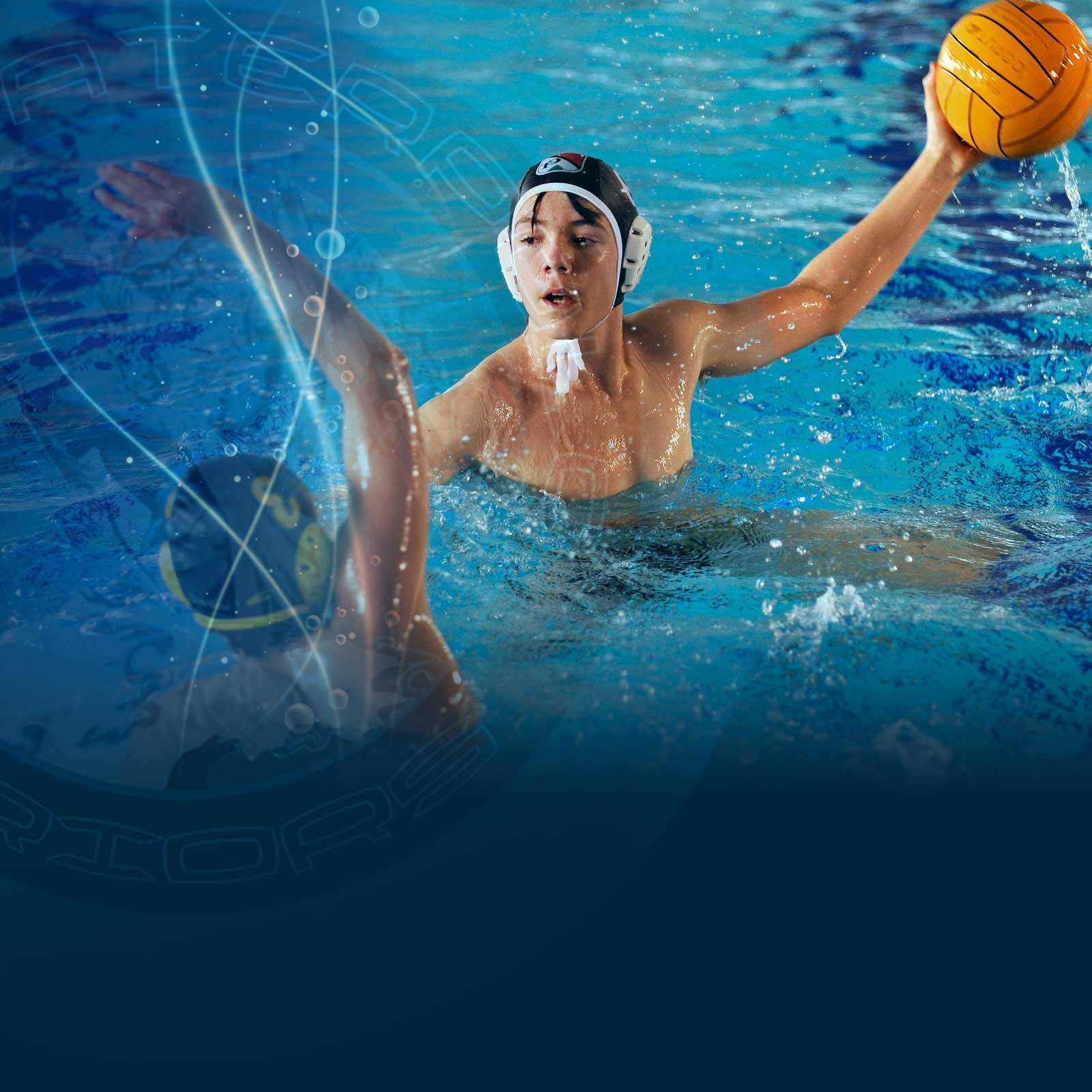 waterpolo-warriors